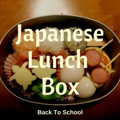 Japanese obento lunch box set